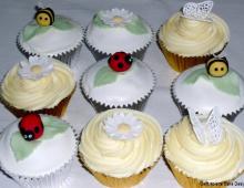 cupcakes-nature