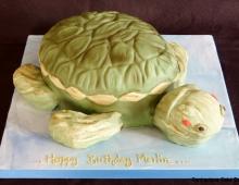 Turtle-novelty