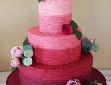 Pink-shades-buttercream