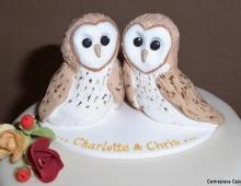 owls-topper