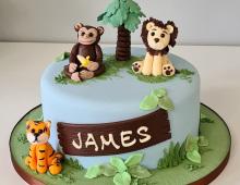 Child-wild-animal-birthday-cake