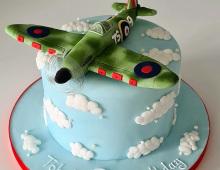 Childs-spitfire-birthday