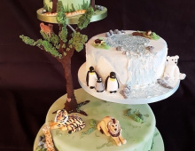 Safari-wedding-tiered